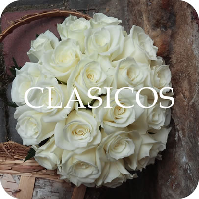 Ramos clasicos